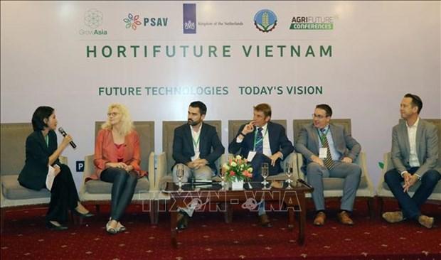 荷兰在越南分享种植领域的发展经验 hinh anh 2
