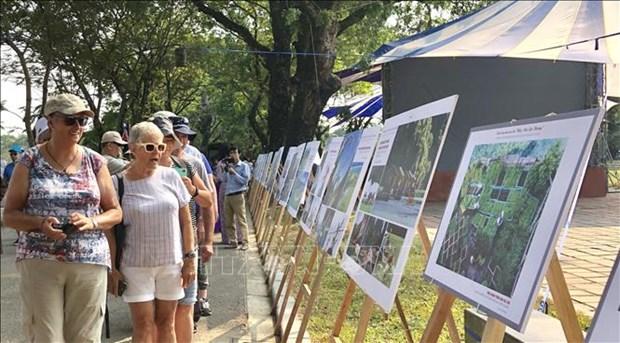 """""""家乡海洋岛屿""""艺术展览会在承天顺化省举行 hinh anh 2"""