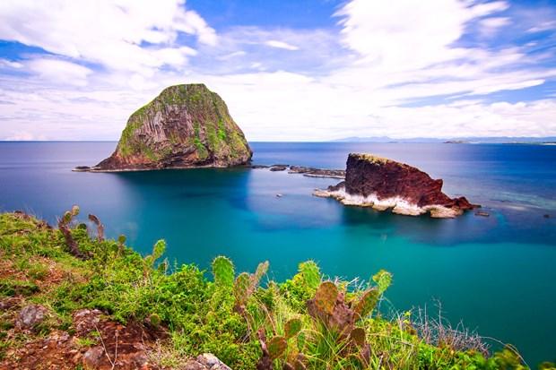 富安省需加强对燕岛珊瑚礁的保护措施 hinh anh 1