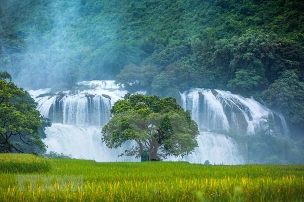 高平省优先促进农业、旅游和口岸经济发展 hinh anh 1
