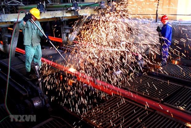越南近100%钢材生产原料要从外国进口 hinh anh 1