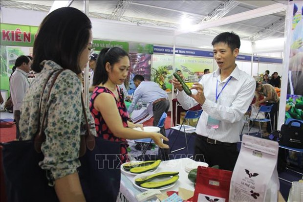 """2019年""""一乡一品""""国际博览会今日在胡志明市开展 hinh anh 2"""
