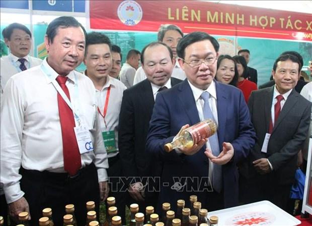 2019年合作社贸易促进展销会在胡志明市开展 hinh anh 1