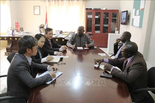 越南与冈比亚共同努力深化经贸合作 hinh anh 1