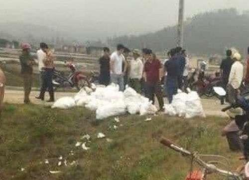 乂安省:抓获贩运毒品犯罪嫌疑人3名缴获700公斤冰毒 hinh anh 1