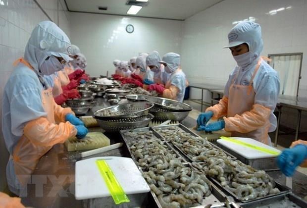 为越南虾类产品出口敞开大门 hinh anh 1