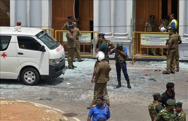 斯里兰卡系列爆炸事件中未有越南人伤亡的报告 hinh anh 1