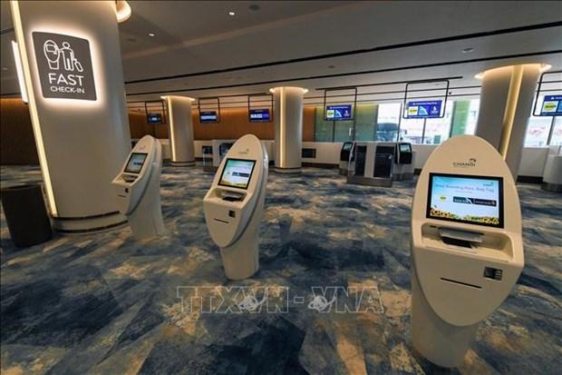 新加坡规模最大的室内花园--星耀樟宜机场投运 hinh anh 1