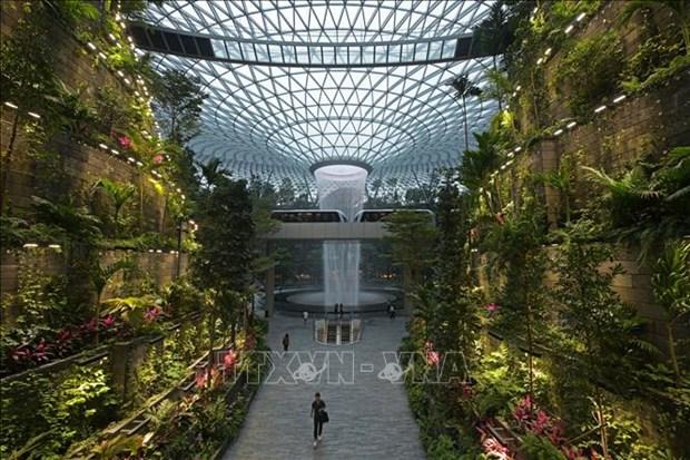 新加坡规模最大的室内花园--星耀樟宜机场投运 hinh anh 2
