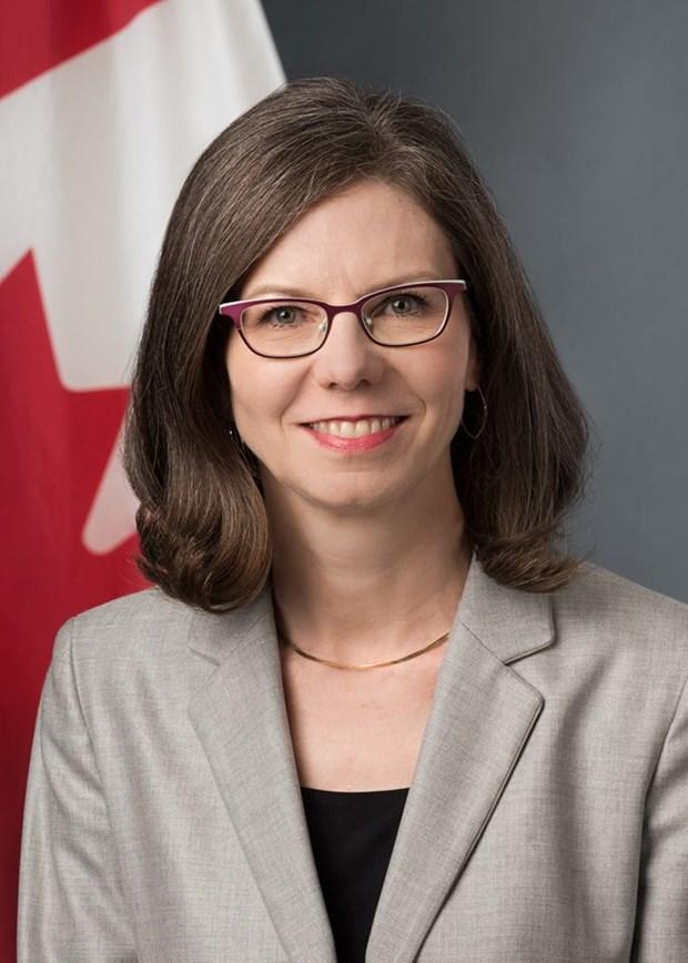 促进越南与加拿大的全面伙伴关系发展 hinh anh 1