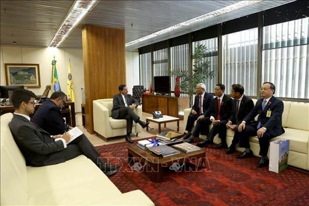 巴西副总统汉密尔顿·穆拉奥会见越南国会副主席汪周刘 hinh anh 1