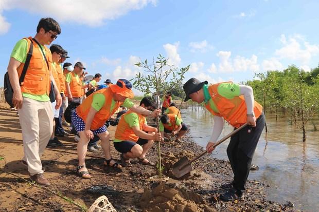 茶荣省:携手应对环境问题 hinh anh 2