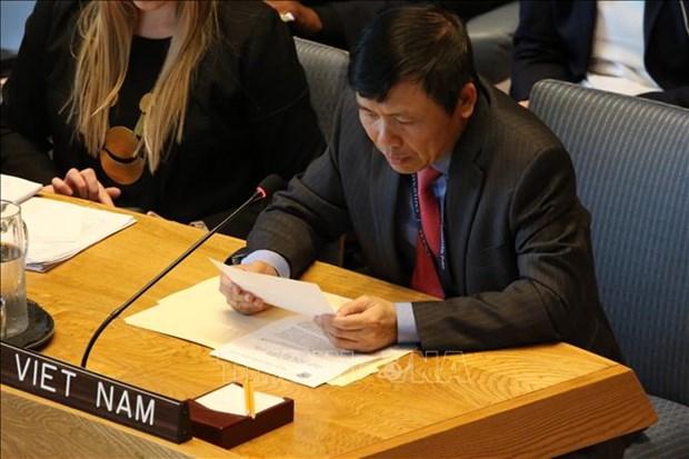 越南支持终止冲突中的性暴力行为 hinh anh 2