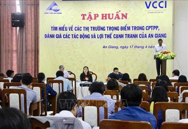 CPTPP为国内企业实现出口市场多元化提供支持 hinh anh 1