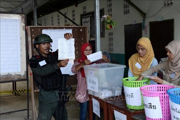 泰国重新选举结果不会改变大选结果 hinh anh 1