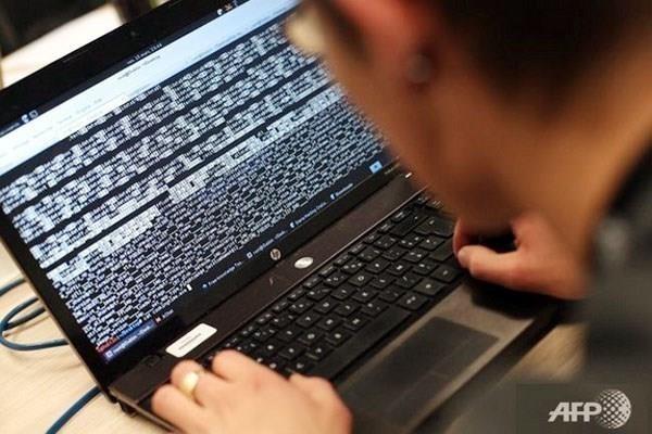 今年第一季度越南遭4700起网络攻击 hinh anh 1