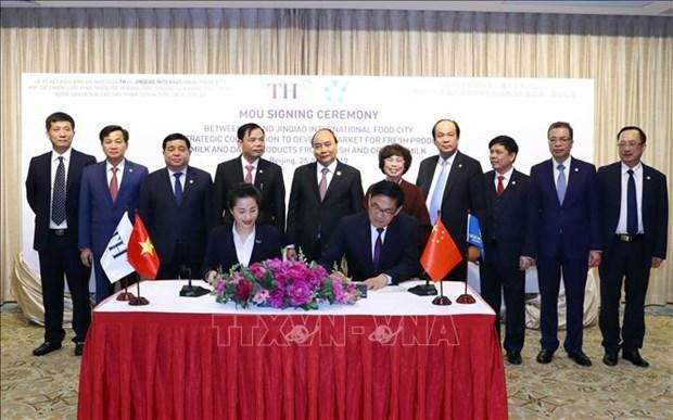 阮春福出席TH集团与中国无锡金桥公司合作备忘录签署仪式 hinh anh 1