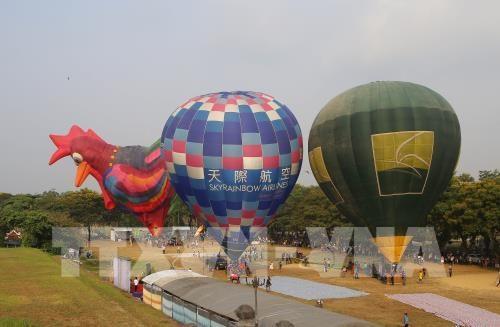 颇具特色的2019年顺化热气球节举行 hinh anh 1