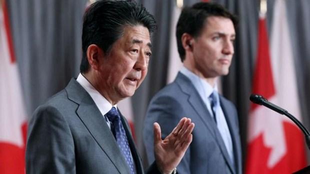 日本与加拿大强调CPTPP带来巨大利益 hinh anh 1