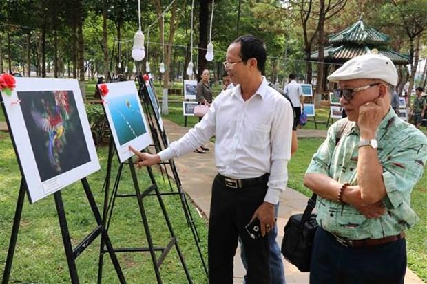 越南南中部和西原地区艺术图片节在嘉莱省举行 hinh anh 1