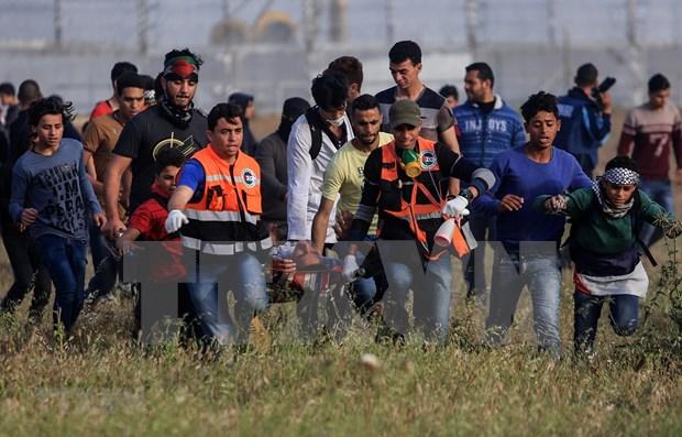 越南呼吁有关各方采取行动 避免加沙地带人道主义状况恶化 hinh anh 1
