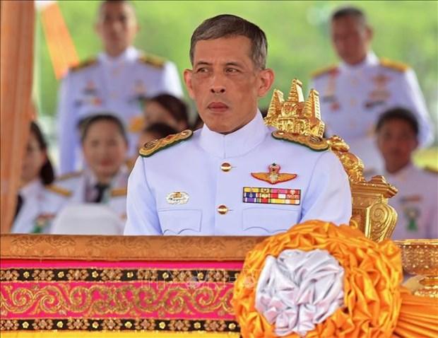 泰国为国王加冕仪式做准备 hinh anh 1