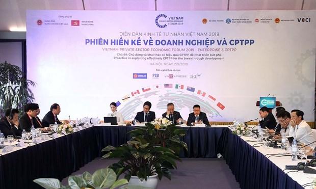 越南私营经济论坛:有效利用CPTPP机遇 主动迎接挑战 hinh anh 1