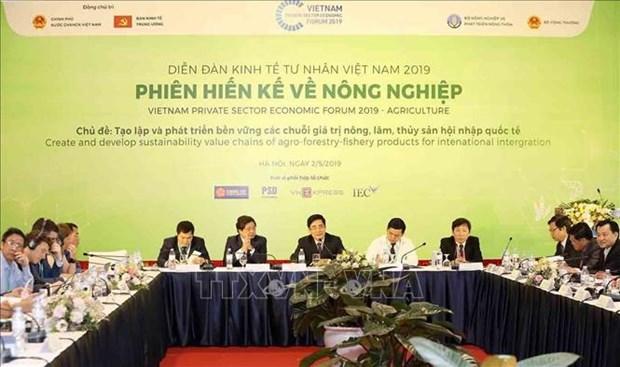 2019年越南私营经济论坛:创造可持续发展价值链 hinh anh 1