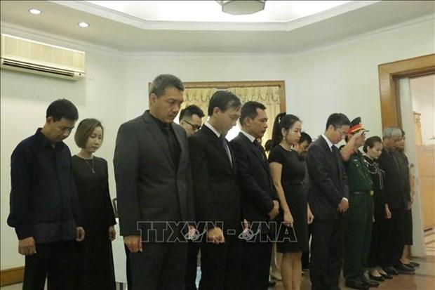越南原国家主席黎德英吊唁仪式在印度尼西亚等国家举行 hinh anh 1
