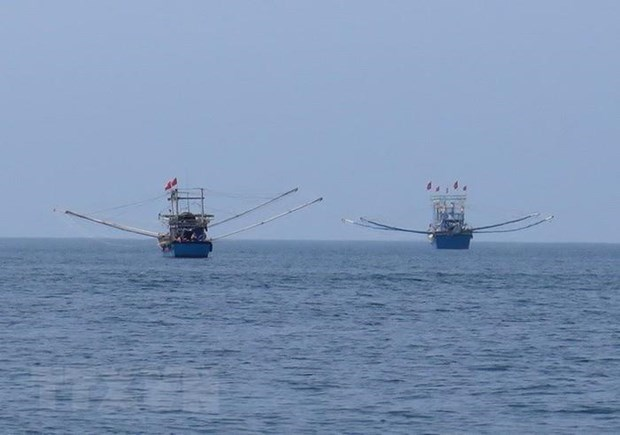 越南驳回中方在东海实施休渔令,侵犯越南主权的单方面行为 hinh anh 1