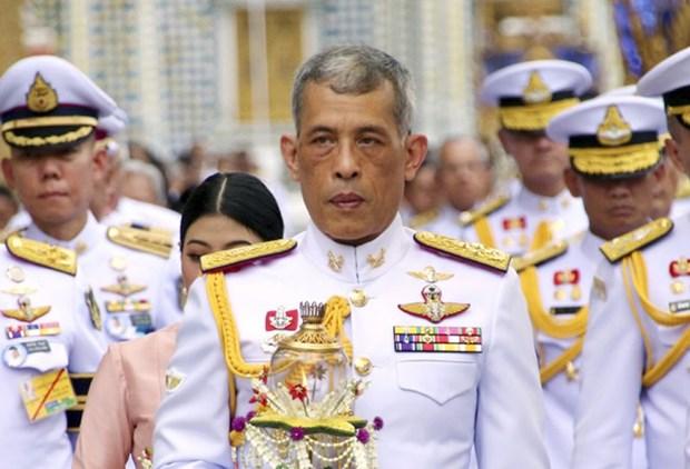 泰国国王正式加冕典礼今日举行 hinh anh 1