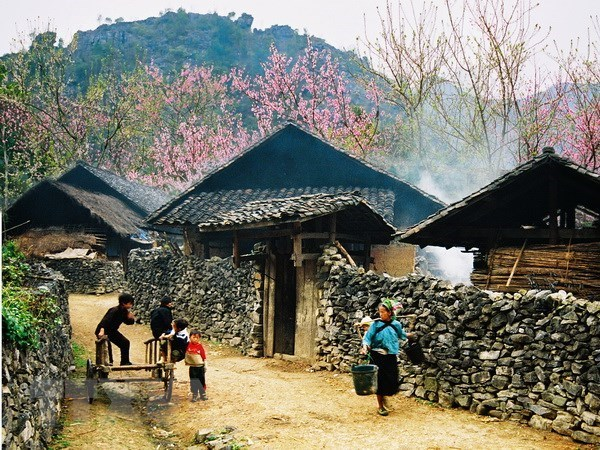 同文岩石高原全球地质公园--河江省旅游发展的催化剂 hinh anh 1