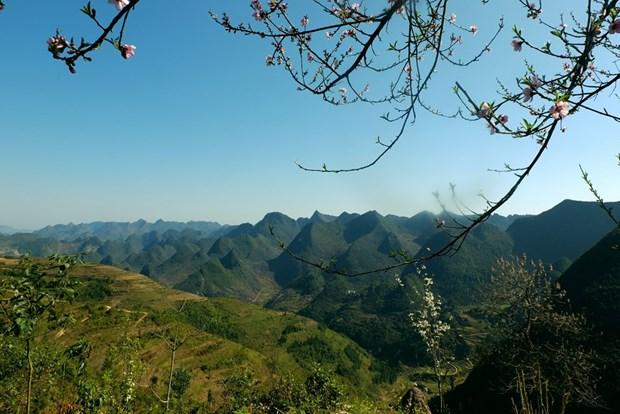 同文岩石高原全球地质公园--河江省旅游发展的催化剂 hinh anh 2