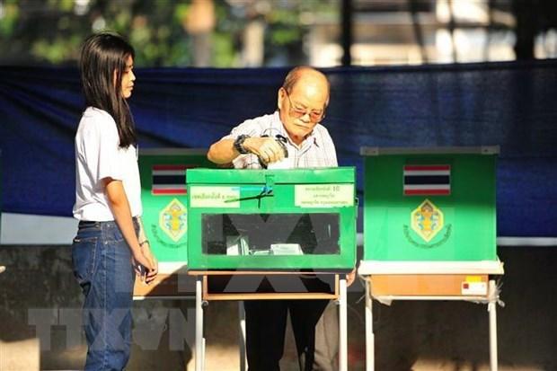 泰国选举委员会将提早公布大选正式结果 hinh anh 1