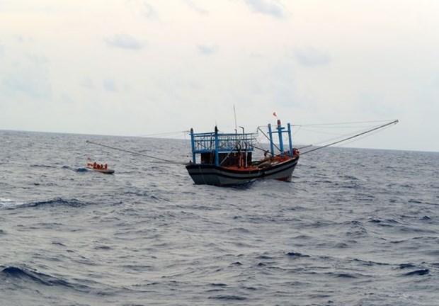 广南省海上遇险的2艘渔船获救 hinh anh 1