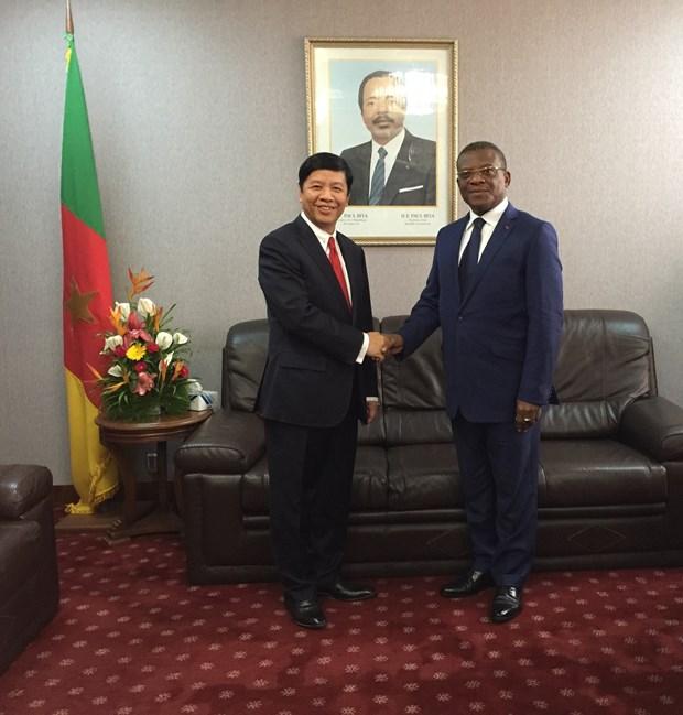 政府总理特使、外交副部长阮国强对喀麦隆进行工作访问 hinh anh 1