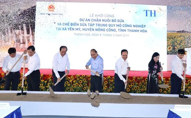 阮春福总理出席清化省奶牛养殖与牛奶加工项目开工仪式 hinh anh 1