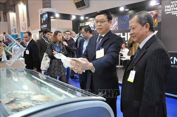 越南水产品实现可持续发展,力求在欧洲市场上站稳脚跟 hinh anh 1