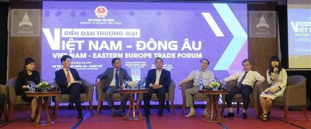 越南对东欧市场出口产品潜力巨大 hinh anh 1