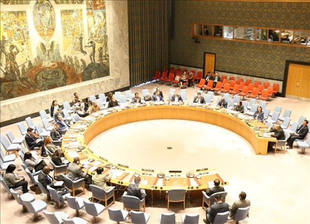 越南呼吁加大训练力度和加强联合国维和力量的能力 hinh anh 1