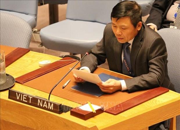 越南呼吁加大训练力度和加强联合国维和力量的能力 hinh anh 2