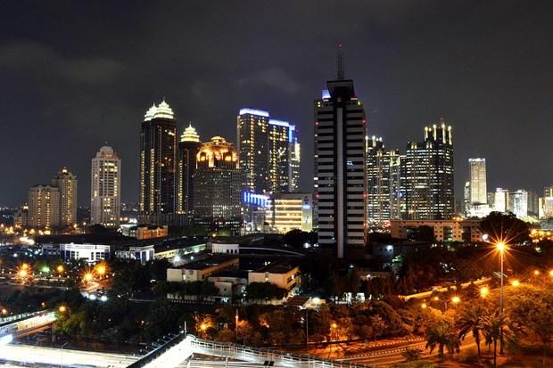 印度尼西亚寻求与南太平洋国家的合作机会 hinh anh 1