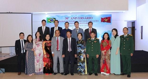 越南与巴西建交30周年纪念典礼在巴西利亚举行 hinh anh 1