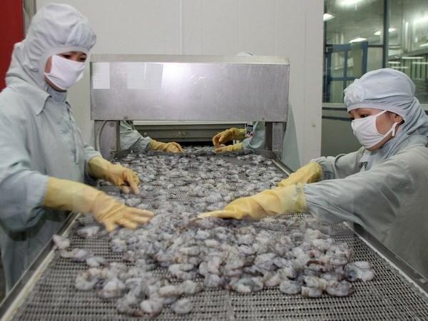 充分利用CPTPP加大虾类产品对加拿大出口力度 hinh anh 2
