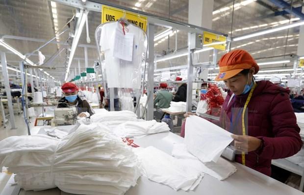 全球经济增速放缓将对越南经济长期增长产生影响 hinh anh 1