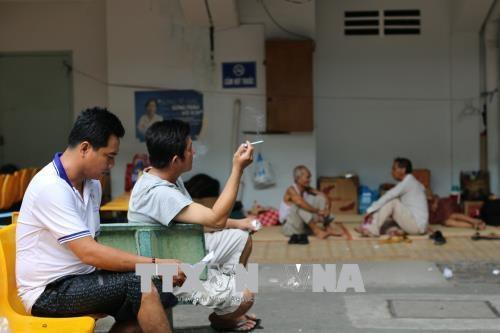 越南吸烟率仍居高位 hinh anh 1