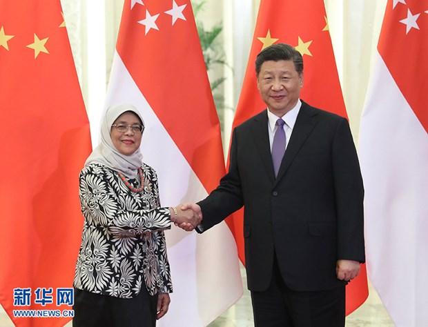 中国与柬埔寨和新加坡加强合作关系 hinh anh 2