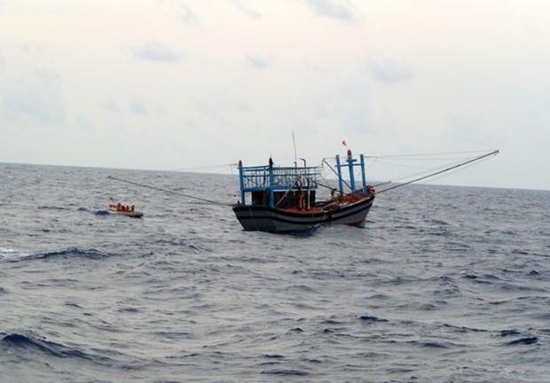 越南两艘遇险渔船和船上40名渔民安全靠岸 hinh anh 1