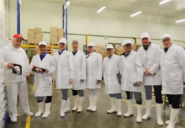 俄罗斯布良斯克州承诺为越南企业创造便利条件 hinh anh 1