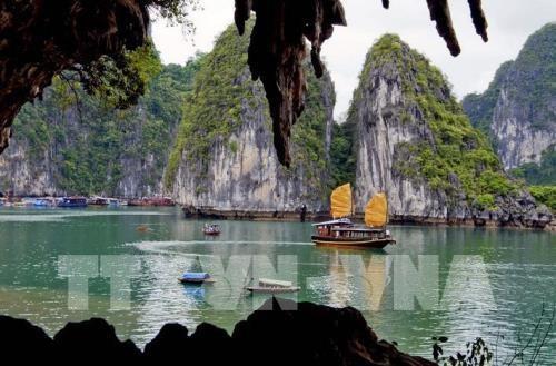 一季度越南接待韩国游客量超过100万人次 hinh anh 1